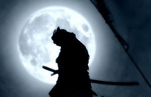 ninja-samurai-luna