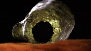 ameba-espacial
